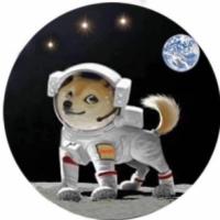 DOGZ-太空狗